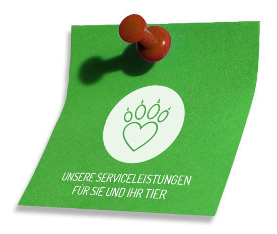Leistungen, Tierarztpraxis Wackersdorf, Dr. med. vet. Yvonne Friedl